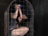 Bondage BDSM Rain DeGrey tied up in box