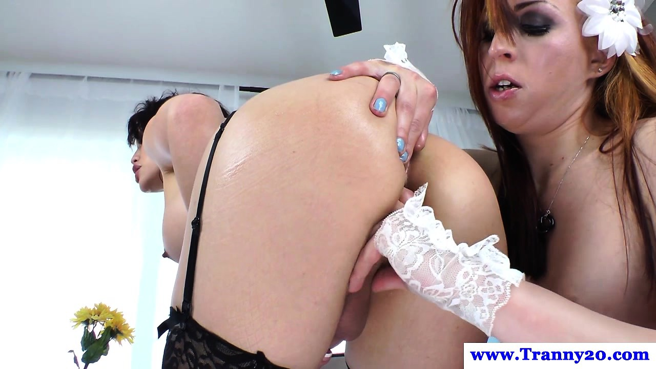 Shemale amateur assfingered and sucked