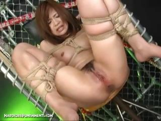 Porn Tube of Extreme Japanese Bdsm Sex