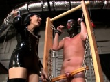 Nasty domina gives slave a ballbusting