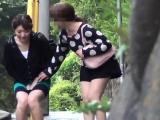 Asian squats and pisses