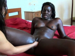 Black and white lesbians masturbate wet pussies