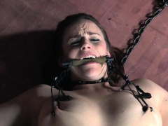 Bound bdsm babe head caged after flogging